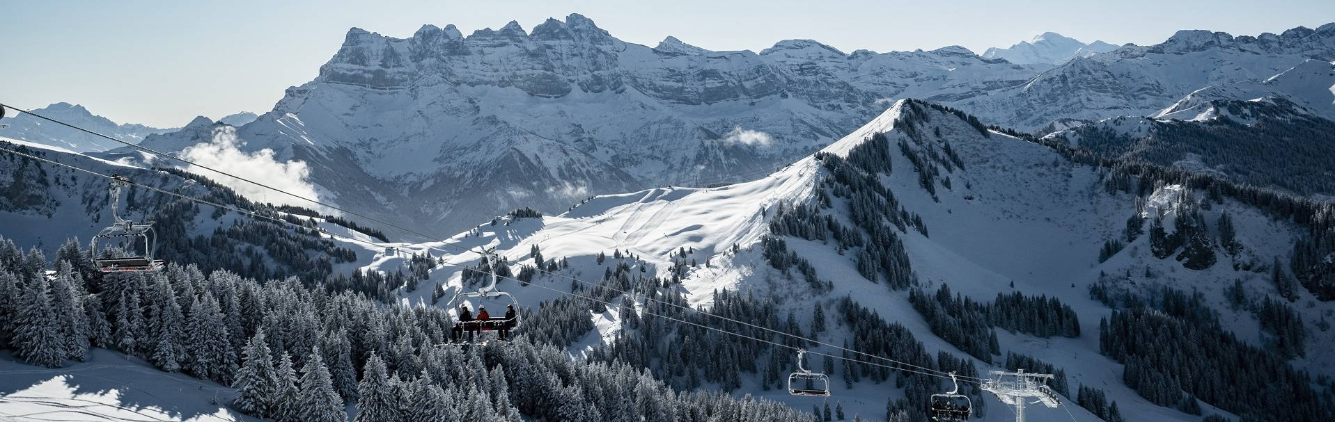 chatel-domaine-20200118-28-2104