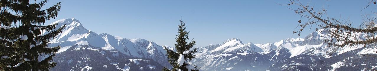Forfait ski Portes du Soleil