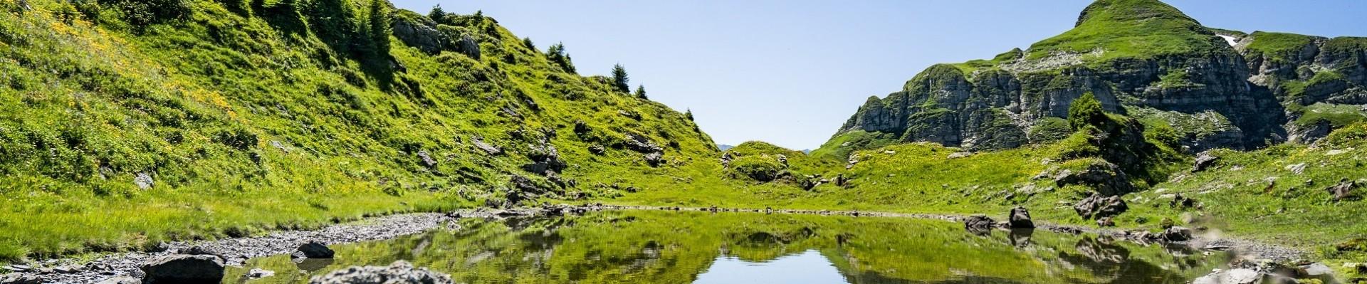 chatel in summer © lambert