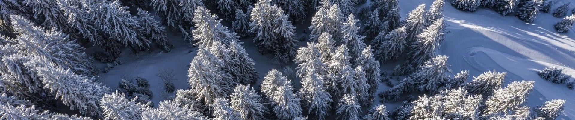 Paysages sous la neige à Châtel