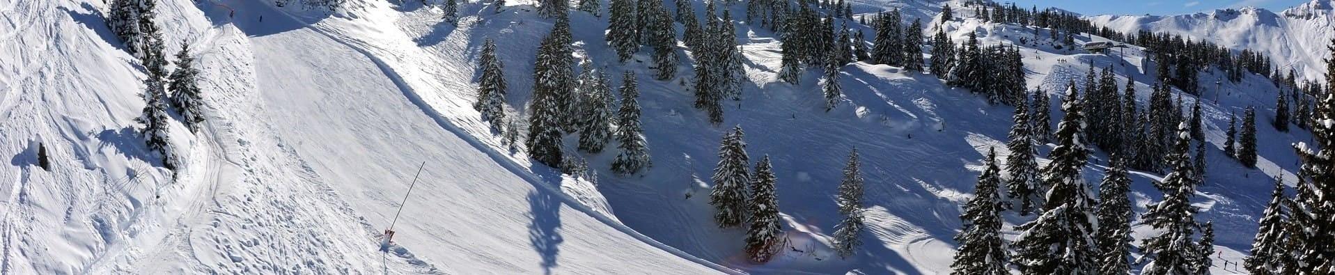 Ski area Châtel Espace Liberté