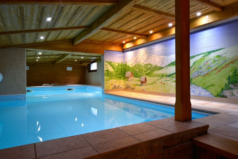 Residence la fleche d 39 or appart 39 hotel 3 etoiles chatel for Appart hotel jacuzzi