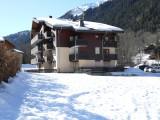 1-campanules-hiver-1090642
