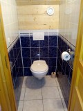 toilet-1616199