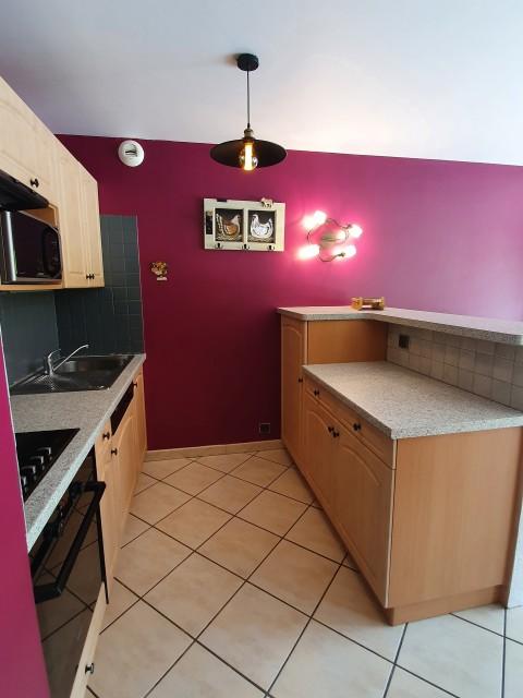 Appartement BOULE DE NEIGE cuisine Châtel