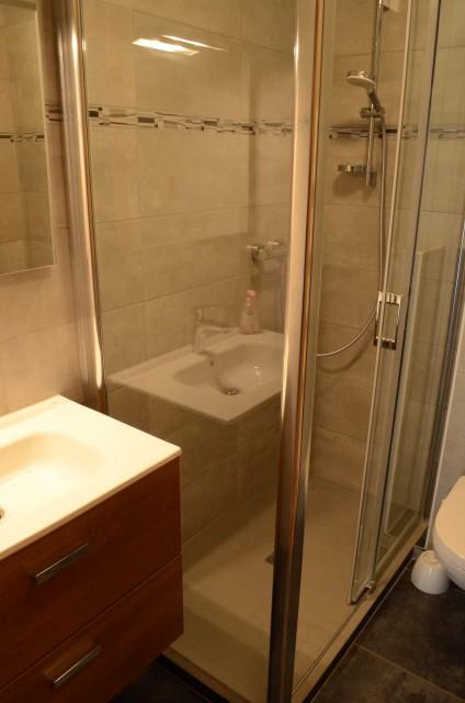 Appartement dans chalet la Ferme, Salle de douche, Châtel