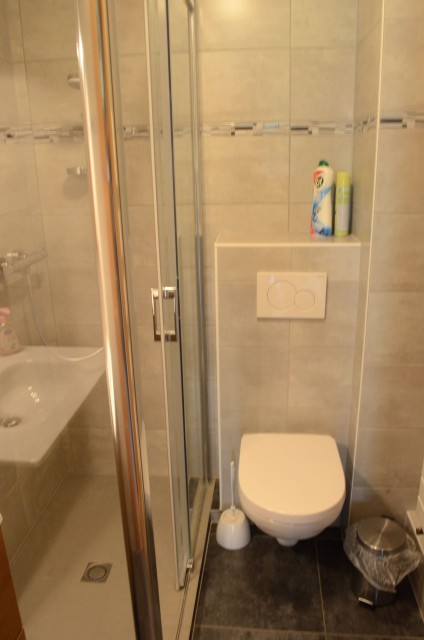 Appartement dans chalet la Ferme, Salle de douche, Châtel Portes du Soleil