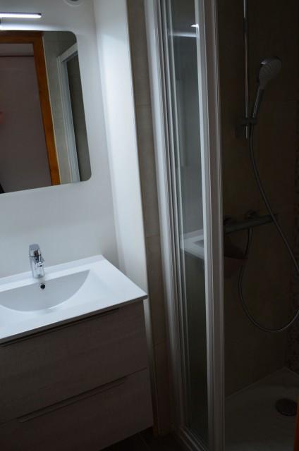 Appartement dans Chalet La Louise Douche Châtel  2