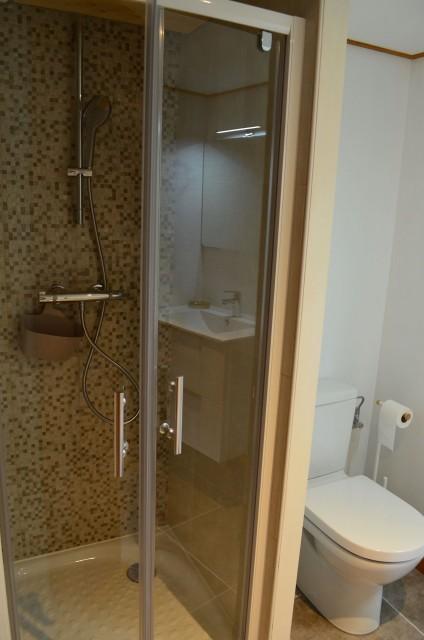 Appartement dans Chalet La Louise Salle de Douche Châtel 2