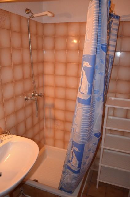 Appartement dans chalet le Bivouac, Salle de douche, Châtel