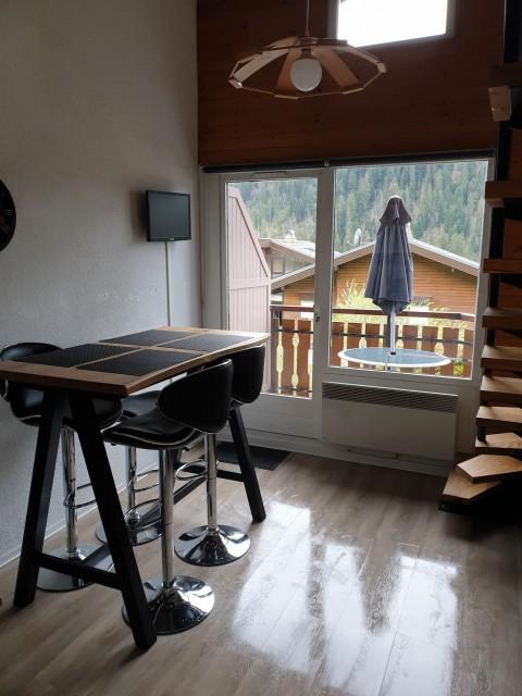 Appartement la toison blanche 55 C salon Châtel