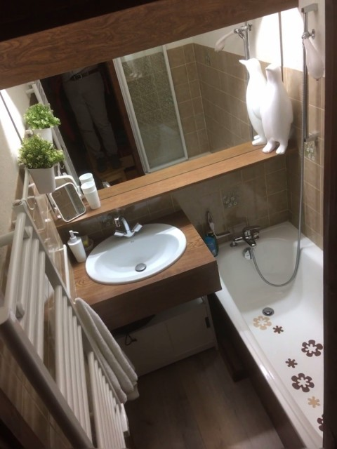 Appartement Les Biches 27B Salle de Bain Châtel  2