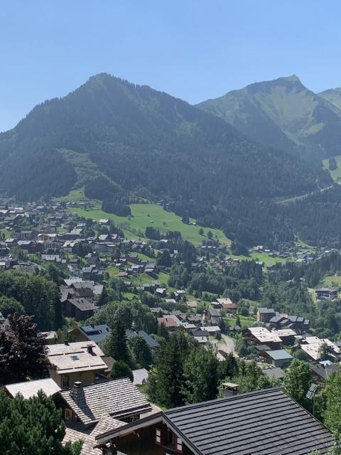 Appartement les sorbiers n°7, Vue depuis le balcon en été, Châtel Alpes du Nord