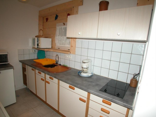 appartement rhododendrons cuisine Châtel