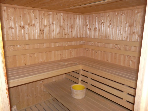 Chalet Linga Sauna Châtel 2