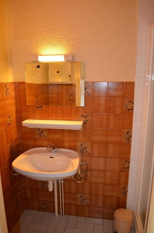 Appartement dans Chalet Grepillat Salle de Douche Châtel 2