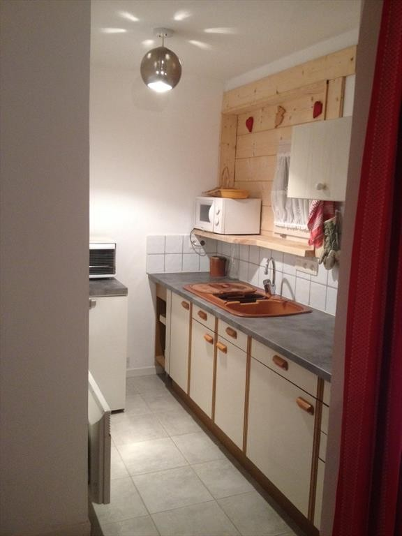 appartement rhododendrons cuisine Châtel 74